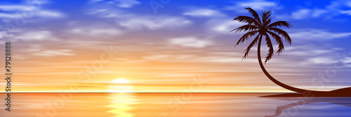 Sunset, Sunrise with Palm Tree - 79128888
