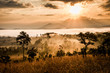 canvas print picture - sunrise in savanah meadow
