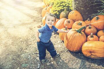 Young Boy Picking Out a Pumpkin
