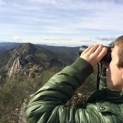 niño observandp con prismaticos los buitres en monfrague