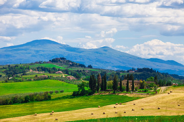 Typical summer rural landscape of Tuscany, Italy