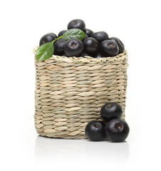 Berries in bowl isolated