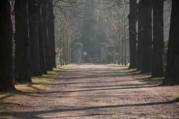 Friedhofsallee #0451