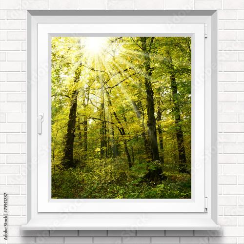 Obraz w ramie fenster 10 spr yna las okienny for Fenster 70x50