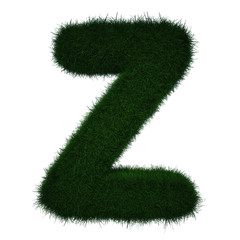Realistic Grass Letter Z