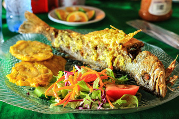 Garlic Fried Fish and Plantain lunch in Costa Rica