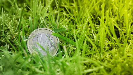 One Euro coin in the grass close up photo.