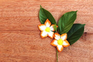 orange paper artificial flower and fresh leave