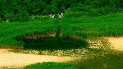 National park on Island Mljet
