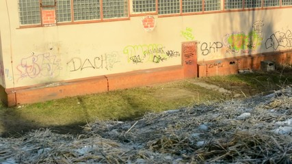 graffiti wall - vandalism - grass - sunny