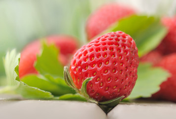 fraise et feuillage