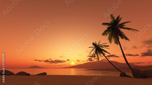 Poster Strand sunset palm tree