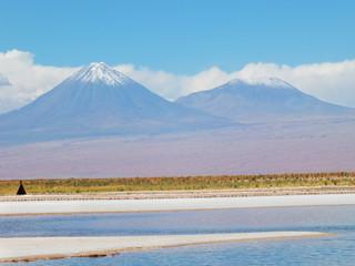 Laguna Cejar. Norte de Chile