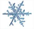 Leinwanddruck Bild - snowflake crystal blue background