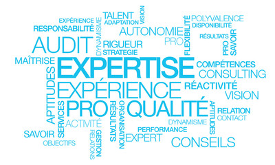 Expertise audit conseil consultant tagcloud mots illustration