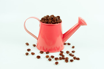 roasted coffee beans in pink water can