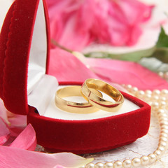 pair of wedding rings with roses for background image