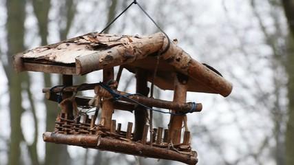 squirrel in wooden trough