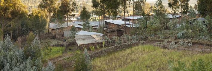 small village and farm in Ethiopia