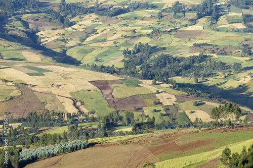 Fotobehang patchwork of farms in Ethiopia