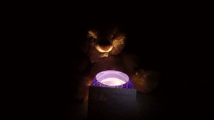 Teddy bear with a candlestick
