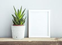 "Постер, картина, фотообои ""frame with succulent in diy  pot. Mock up. Scandinavian design"""