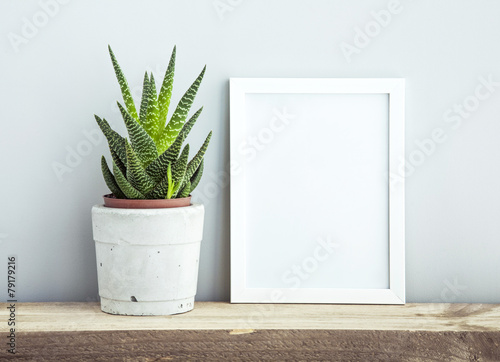 Fotobehang Bloemen frame with succulent in diy pot. Mock up. Scandinavian design