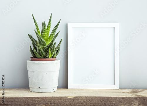 frame with succulent in diy  pot. Mock up. Scandinavian design - 79179216