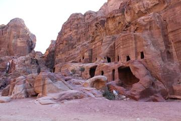 Ослик у пещер древнего города