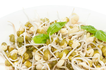 Mung bean sprouts on a plate. Concept of healthy food.