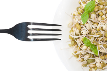 Fork and mung bean sprouts are on the plate. Concept of healthy