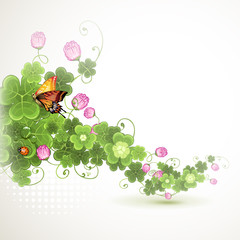 Background with clover  and butterfly
