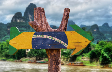 Brazil Flag wooden sign with forest background
