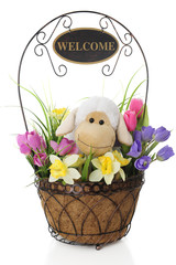 Lambie Welcomes Spring