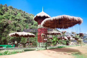 Station agricultures Ang Khang, Thailand