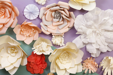 Decorated wall with paper flowers on diagonal colored background
