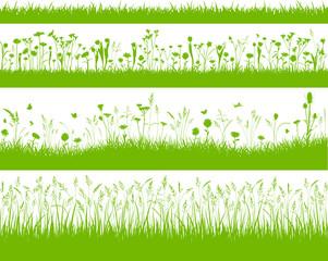 Blumenwiese Herbstwiese Gräser Hintergrund