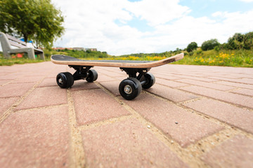 lone skateboard deck outdoor on paving stone