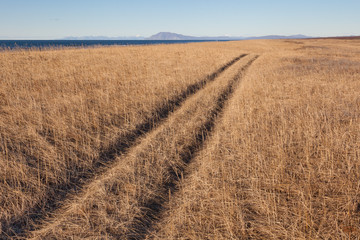 Trace on dry grass. Ocean and hills.