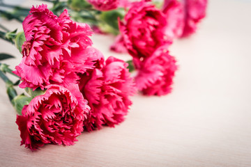 Bunch of fresh pink carnations  on wooden background.