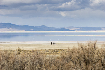 The people walking on the shore of the Great Salt Lake, Utah