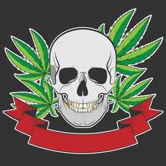 skull and Cannabis