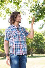 Young man touching leaf on tree