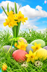 Easter eggs decoration and daffodils flowers. Blue sky with lens