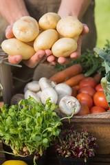 Farmer showing his organic potatoes