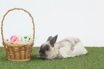 Easter rabbit with basket of eggs on grass