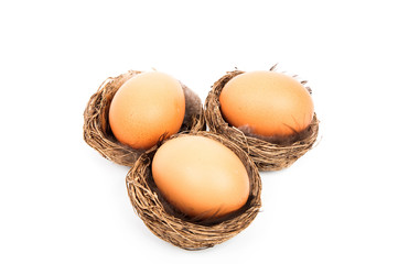 Three birds nests with a chicken egg in it