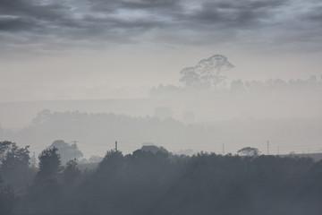 suburban mist