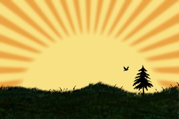 Romantische Frühlings Landschaft mit Sonnenuntergang