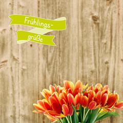 frühlingsgrüße tulpen